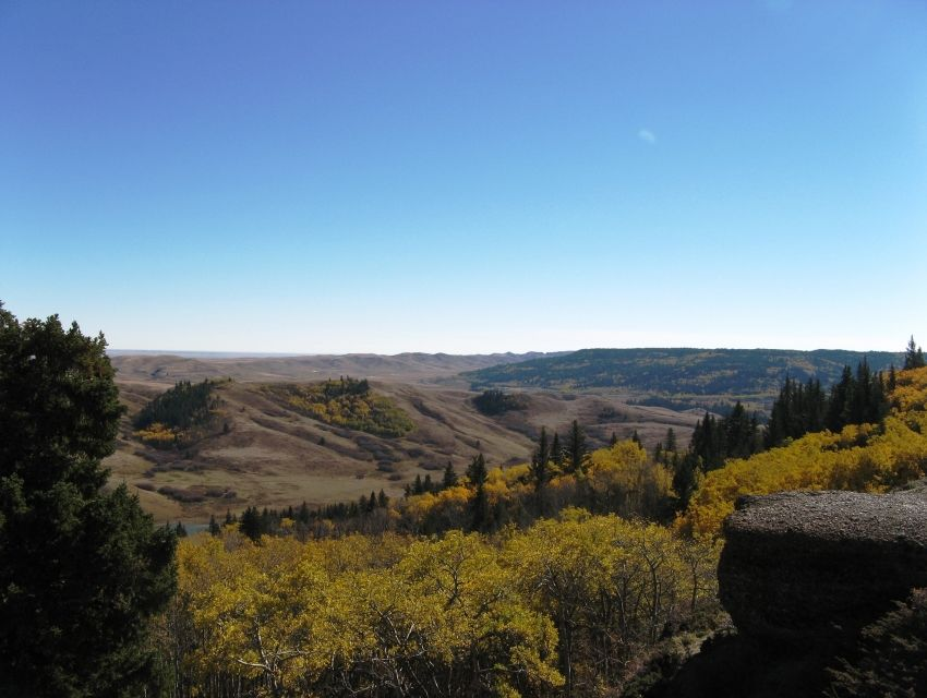 an analysis of the cypress hills